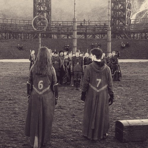Harry quidditch number 7