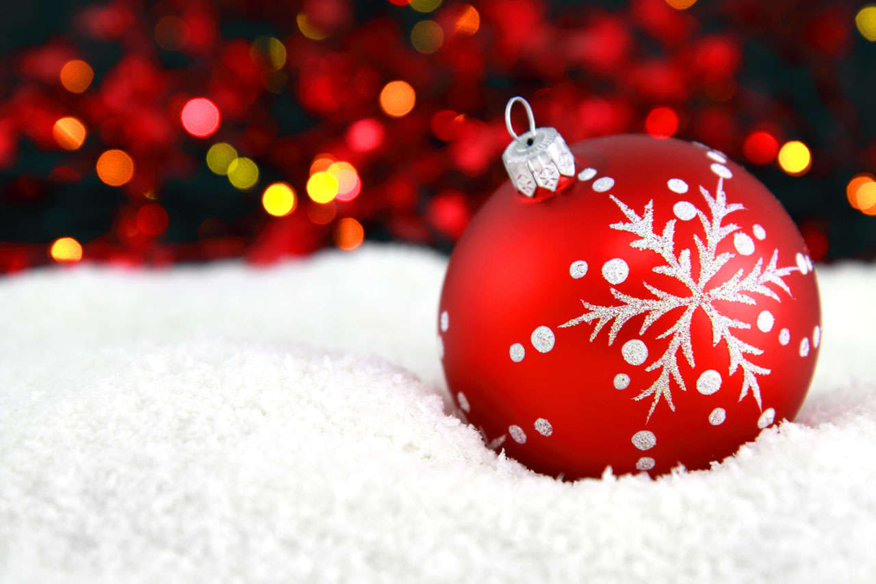 10 Christmas Tree Facts To Make You Feel Festive The