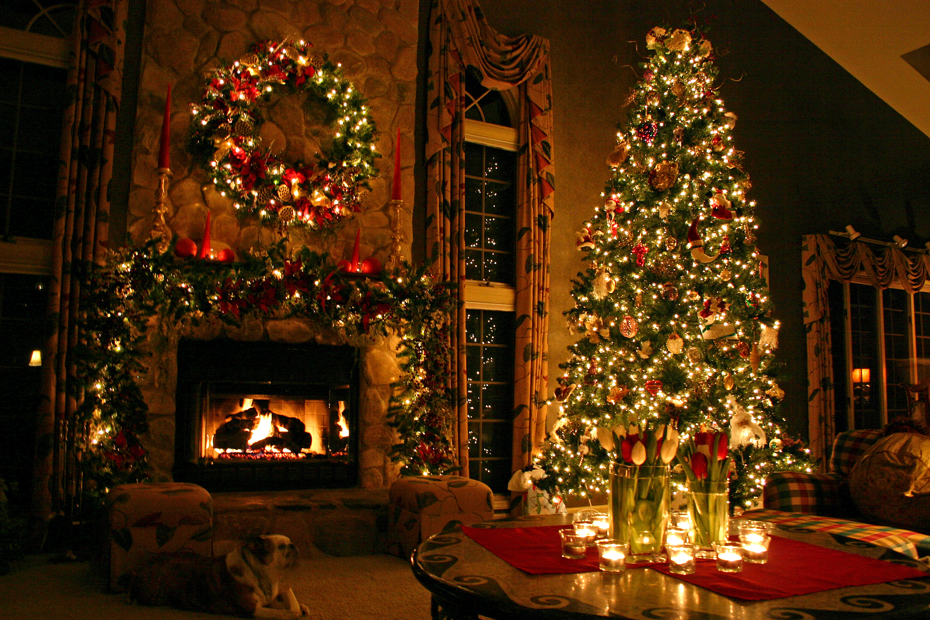 10 Christmas Tree Facts to Make You Feel Festive | The List Love