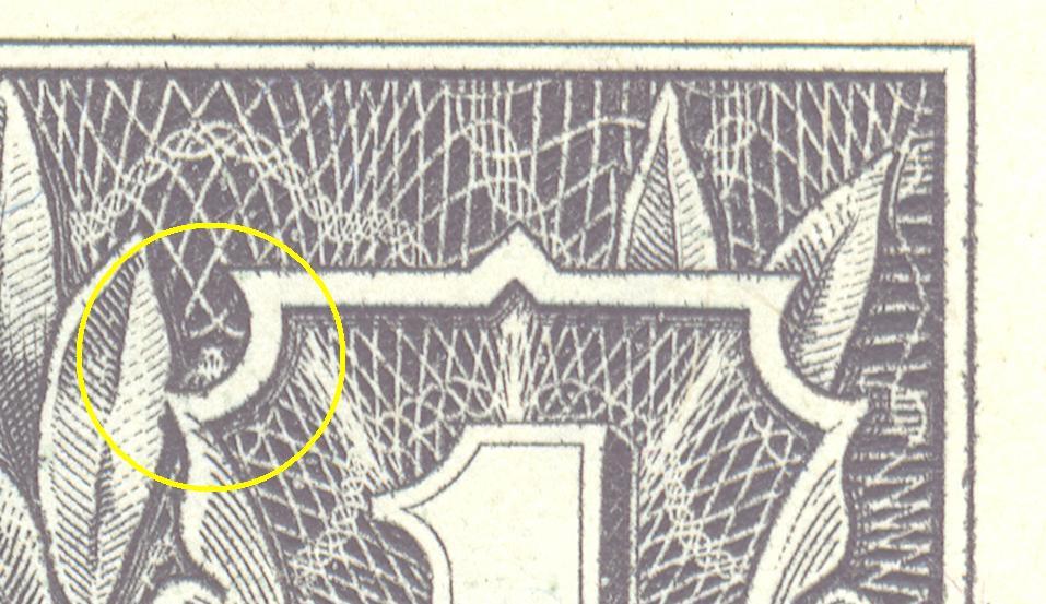spider in the dollar bill