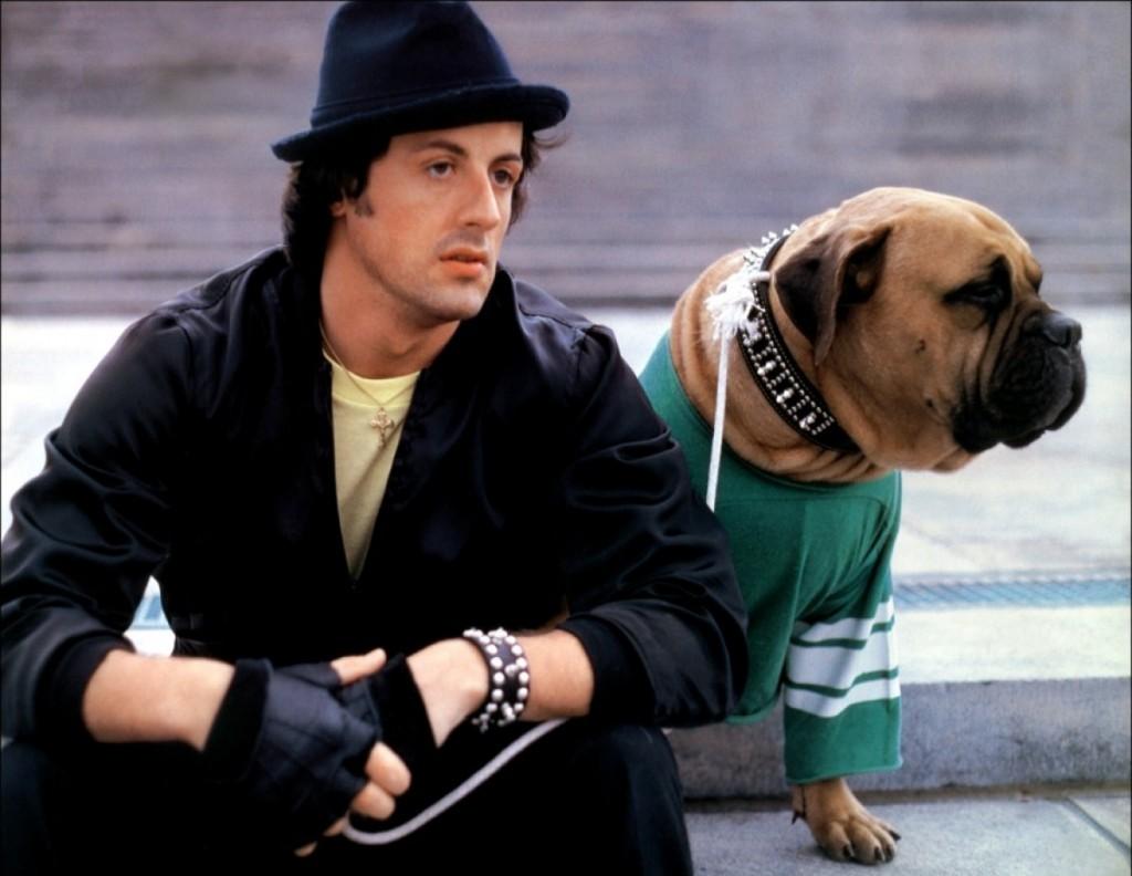 Rocky Butkus dog