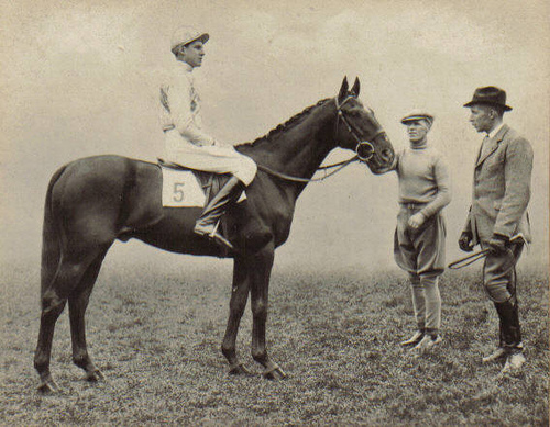 Grand National winner Battleship