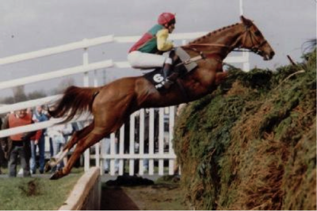 Mr Frisk Grand National
